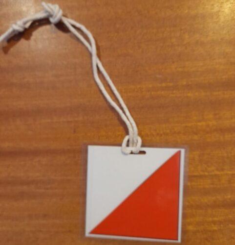 Small control kite...