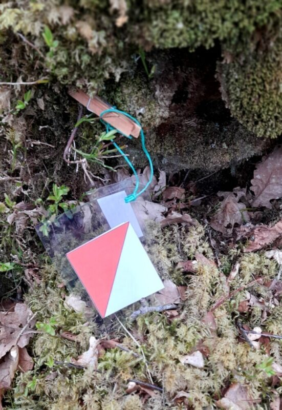 TOC Small kite